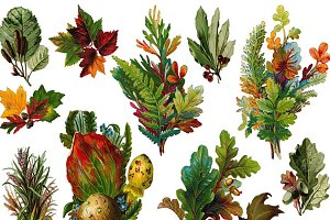 Victorian Diecut Leaf Bouquets