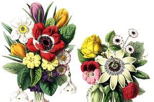 Vintage Botanical Bouquets