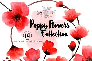 Poppy Flowers Watercolor Clipart