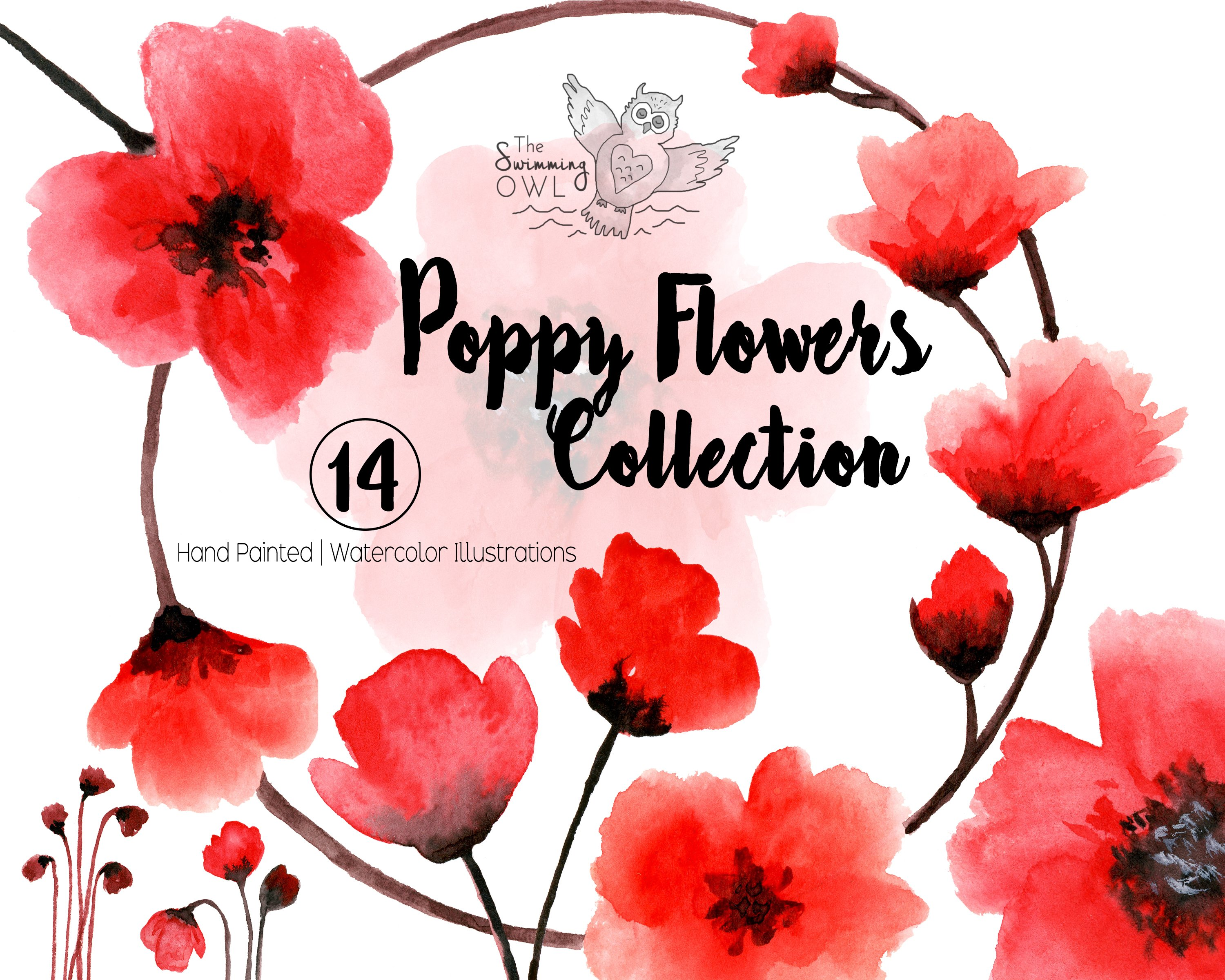 Poppy flowers watercolor clipart illustrations creative market mightylinksfo