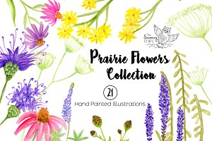 Prairie Flowers Watercolor Clipart
