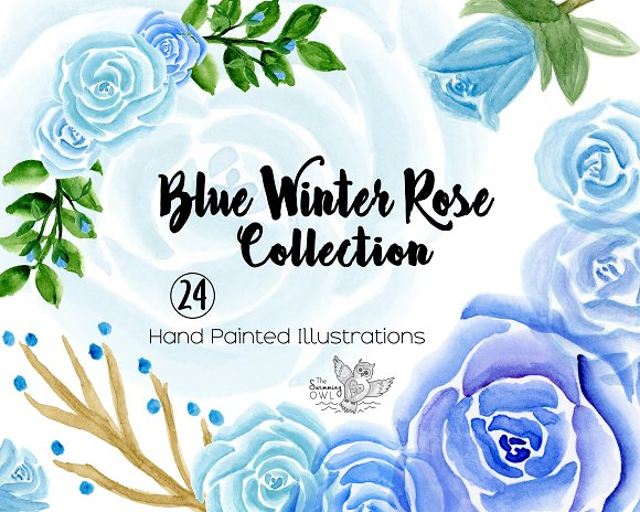 Blue Winter Roses Watercolor Clipart