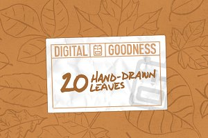 20 Hand Drawn Leaves
