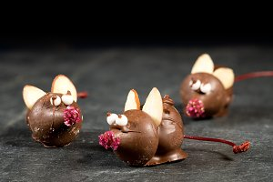 Chocolate covered mouse on top of slate table