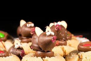 Chocolate covered mouse on top of cookies