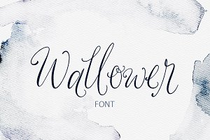 Wallower Script Font