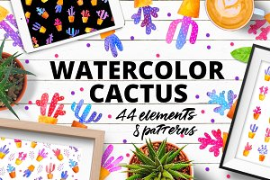 WATERCOLOR CACTUS. HandDrawn set