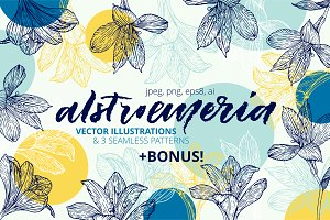 Hand drawn alstroemeria vector set