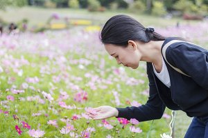 woman touch and smell cosmos flower