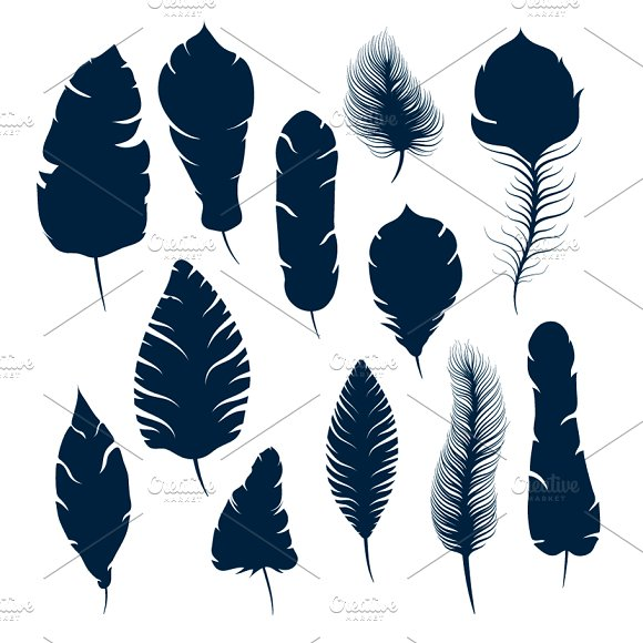 Set of elegant feather silhouettes