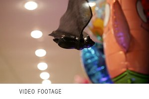 Bat in the toy shop.