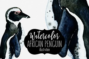 Cute Watercolor Penguin Illustration