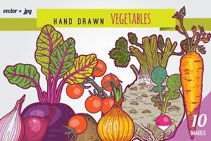 Hand drawn vegetables illustrations