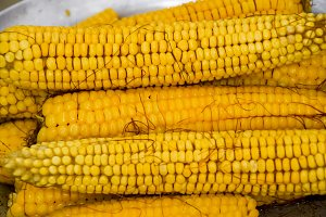 Boiled corn on an aluminum tray. Corn near. Closeup of corn. Yellow boiled young corn, useful and tasty food.