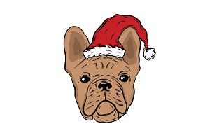FRENCH BULLDOG IN SANTA HAT