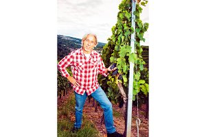 Winemaker Standing By His Vineyard