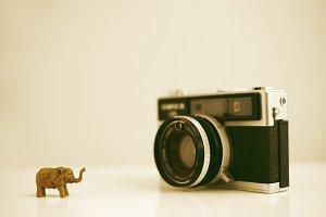 Old photo camera miniature elephant