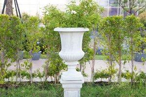 White Jardiniere