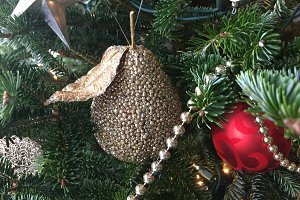 Golden Pear with Red Ball Ornaments