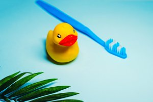 the toothbrush is blue. duck for playing in the bathroom. blue background. fern