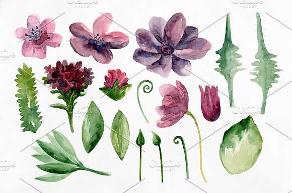 Watercolor purple flowers clip art in Illustrations - product preview 1