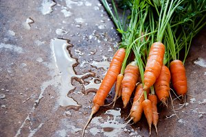 Bunch of fresh carrots