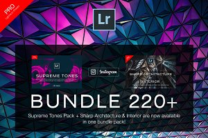 220+ Bundle Lightroom Presets