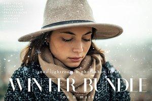 Winter & Christmas Bundle LR & PS