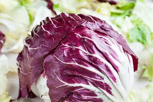 Radicchio red salad on fresh leaves