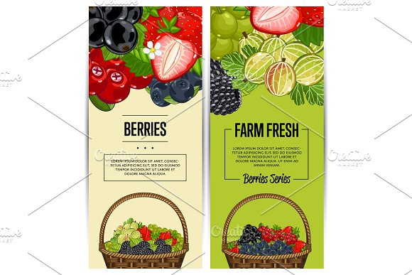 Farm fresh berry flyers set