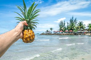 man holding a pineapple in the background a beautiful exotic nature