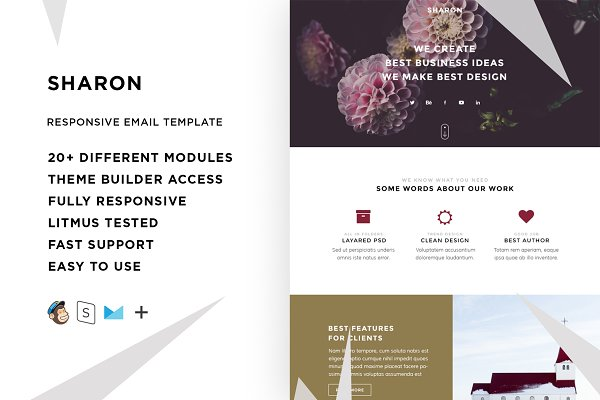 Campaign Monitor Templates: ThemesCode - Sharon – Responsive Email template