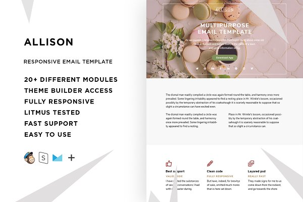 Campaign Monitor Templates: ThemesCode - Allison – Responsive Email template