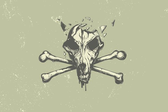 Dog skull.