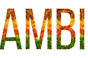 word zambia country is written with leaves on a white insulated background, a banner for printing, a creative developing country colored leaves zambia