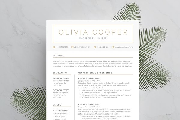 Resume Templates: DemeDesign - Word Resume & Cover Letter Template