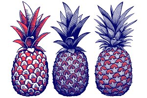 American Pineapple