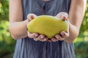 Mango in beautiful female hands on a green background
