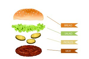 Realistic Hamburger Layers Template