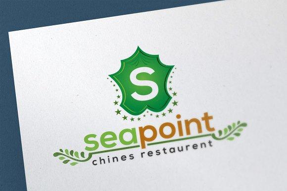 S Letter Decorative Logo Template