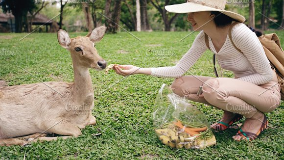 Young happy woman feeding little deer in zoo during travel in national park