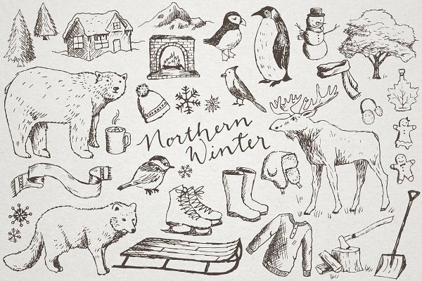 Snowy Northern Winter Illustrations