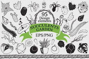 Succulents garden design elements