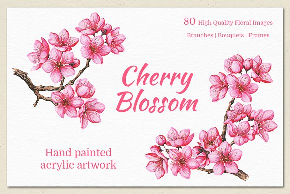 Cherry Blossom. Hand Painted Set in Illustrations