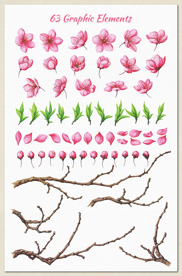 Cherry Blossom. Hand Painted Set in Illustrations - product preview 6
