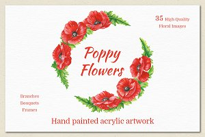 Poppy Flowers. Hand Painted Set