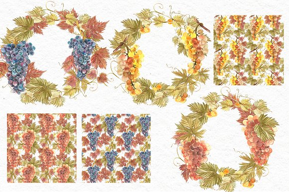 Grapes in botanical style in Illustrations - product preview 4