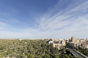Skyline of the Elche city