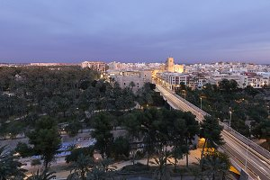 Views of Elche city at sunset