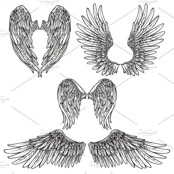 Wings abstract sketch set